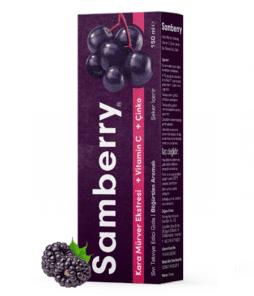Sunlife Samberry Şurup 150 ML'nin Ürün Fotoğrafı