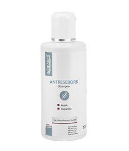 dermoskin antreseborr şampuan 200 ml ürün fotoğrafı